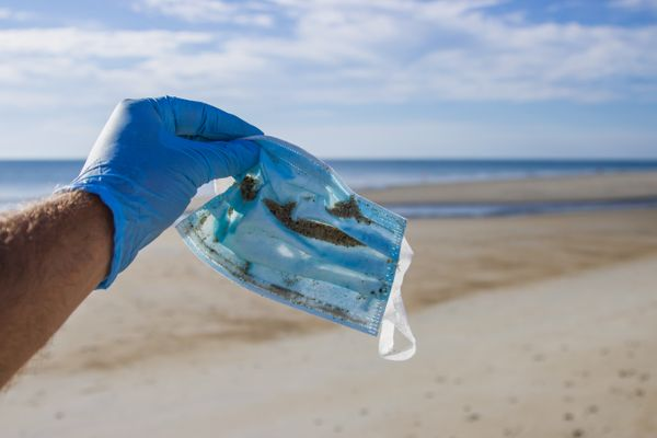 Unmasking the Impact of Covid-19 on Single-Use Plastic Consumption